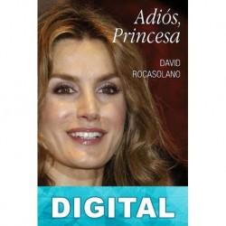 Adiós, Princesa David Rocasolano